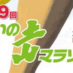 【攻略】あいの土山マラソン