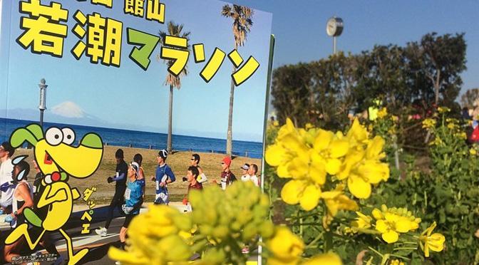 【攻略】館山若潮マラソン 後半の勾配と風がポイント