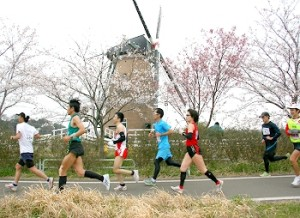 佐倉朝日健康マラソンと桜