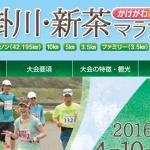 第11回 掛川・新茶マラソン2016 大会結果 河合さおりさん8連覇