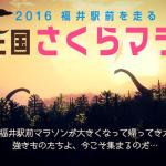 恐竜王国さくらマラソン2016結果