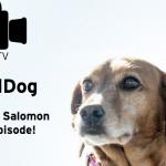 Salomon Running TV: Trail Dog