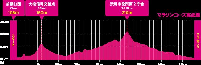 前橋渋川マラソン高低図